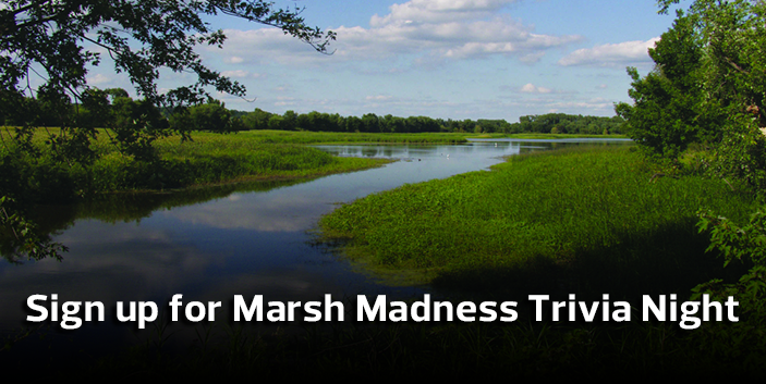 Sign up for Marsh Madness Trivia Night, link goes to event information